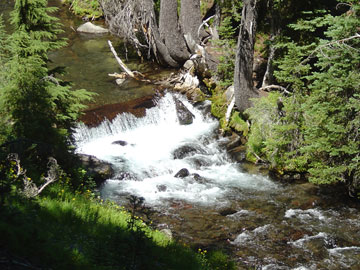 Fall Creek, in the Three Sisters Wilderness, 12 Step retreat